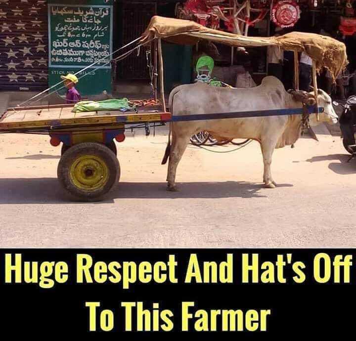 🚜 कृषि दर्शन 🚜 - قرآن شريف سكاليا جائے یا مفت ہر روز یہاں شئیر کر رد کل 6 سے شام ఖుర్ ఆన్ షరీఫ్ ఉచితముగాబేనపిల్లలకు షాదీము నాకింకరు Huge Respect And Hat ' s Off To This Farmer - ShareChat