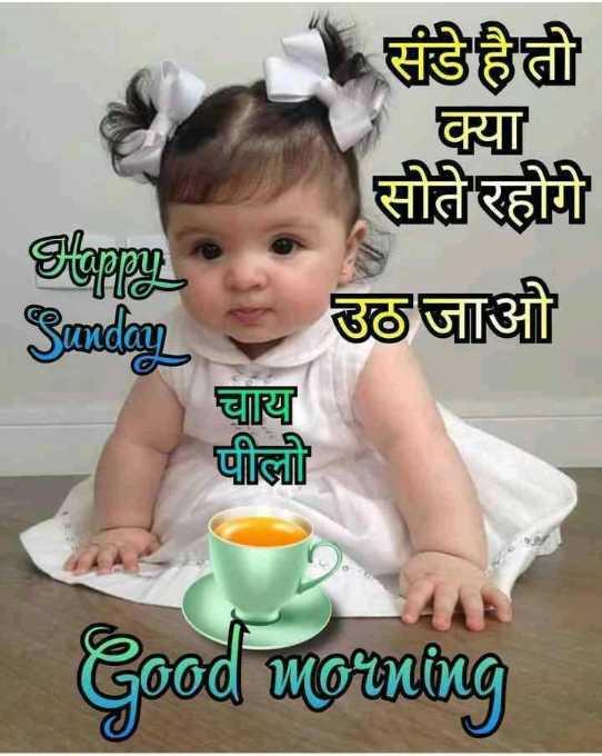 🌷शुभ रविवार - क्या संडे है तो सोते रहोगे उठ जाओ Sunday चाय पीलो Good morning - ShareChat