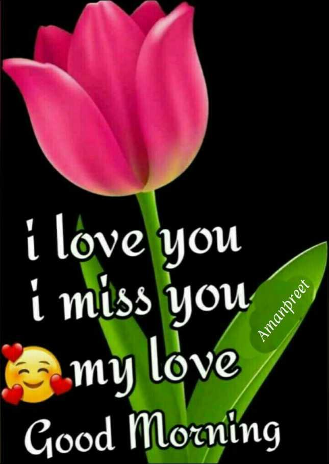 🌅 ਗੁੱਡ ਮੋਰਨਿੰਗ - i love you i miss you my love Good Morning Amanpreet - ShareChat