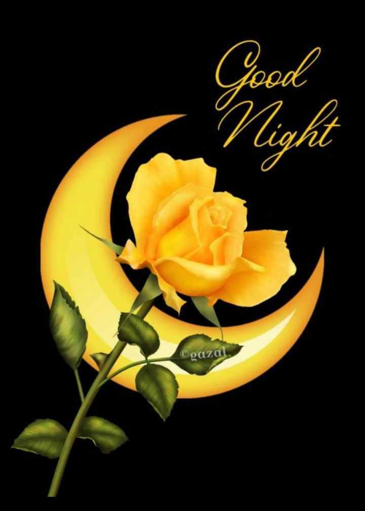 🌙 શુભરાત્રી - ©gazal - ShareChat