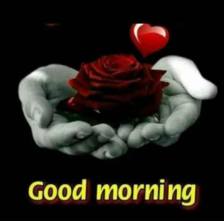 ಶುಭಮುಂಜಾನೆ ನಿಮಗಾಗಿ..🌹 - Good morning - ShareChat