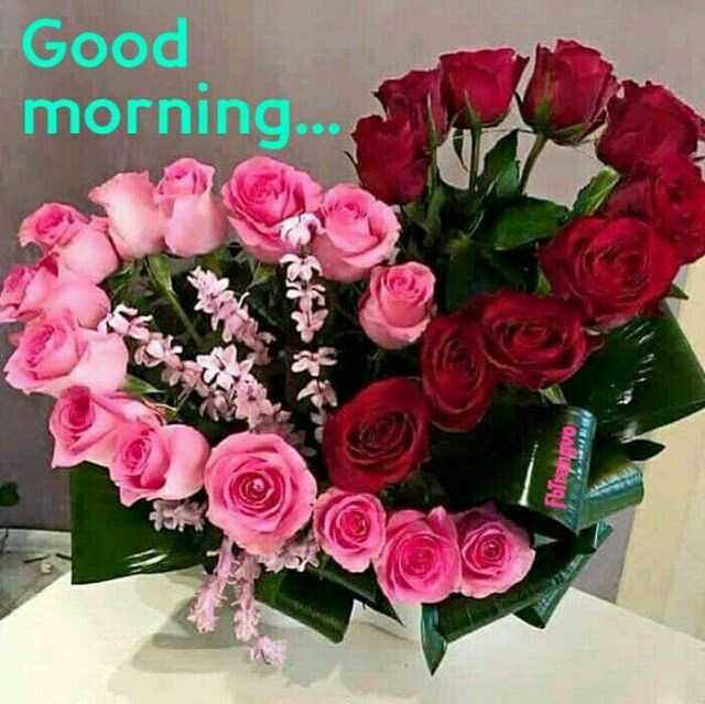 പുലര്കാലം - Good morning . . . Furanovo - ShareChat