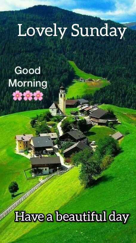 🌞 Good Morning🌞 - Lovely Sunday Good Morning 33 ELLE TETTEL D Have a beautiful day - ShareChat