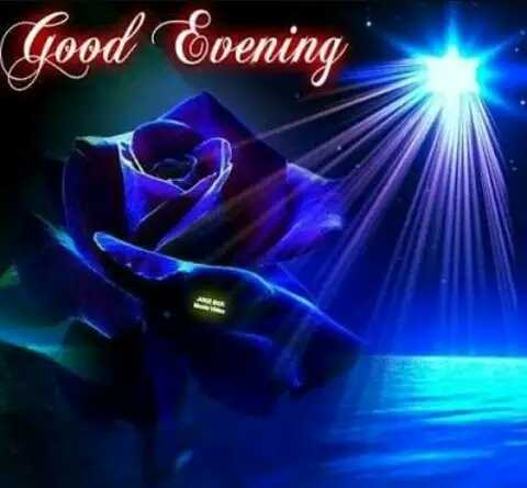 good evening.... - Good Coening - ShareChat