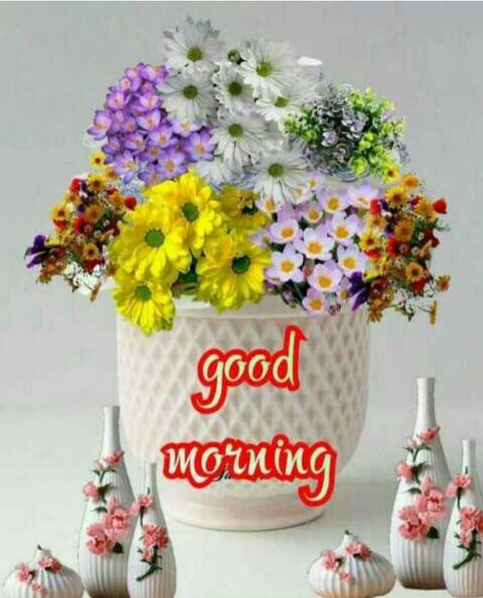 #good morning - good morning - ShareChat