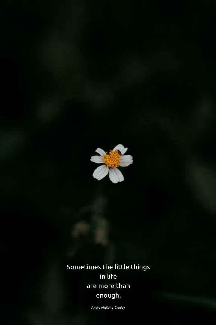 mere vichar - Sometimes the little things in life are more than enough . Angie Weiland - Crosby - ShareChat